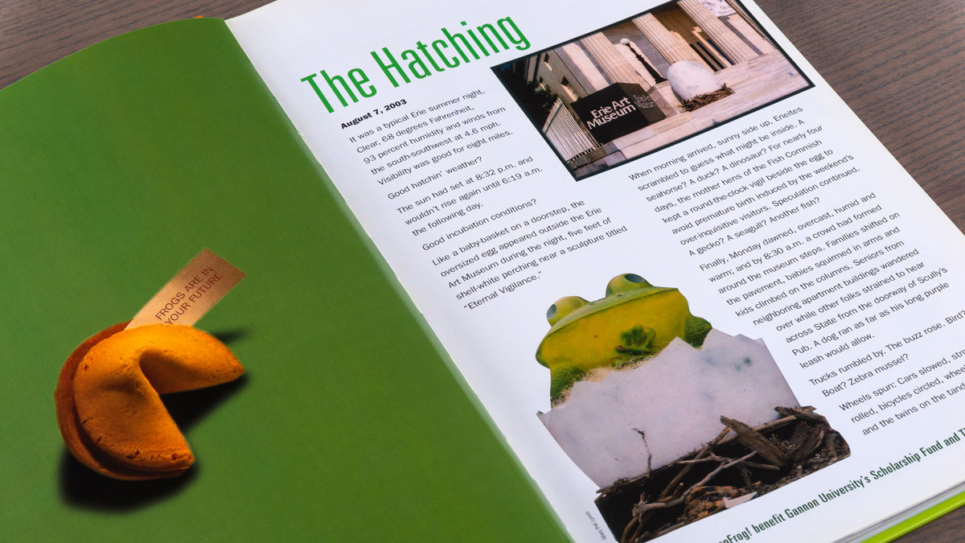 LeapFrog-Book-Hatching